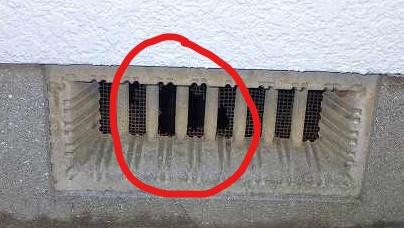 クラシオ 施工実績 シロアリ駆除・換気口パネル設置(ビフォー写真)