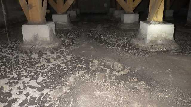 クラシオ 施工実績 床下消毒・清掃・予防工事(ビフォー写真)