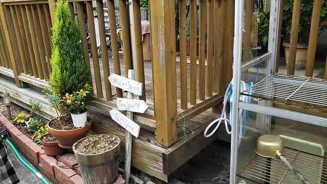 クラシオ 施工実績 ウッドデッキ 床板部分補修及び全面塗装(ビフォー写真)